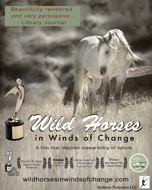 Wild Horses in Winds of Change DVD Cover